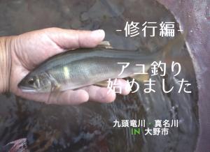 【アユ釣り始めます】九頭竜川(大野市)・真名川➖修行編➖