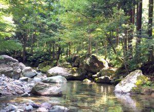 竹田Tキャンプ×FISHPASS 【竹田川にまつわるエピソード ④】