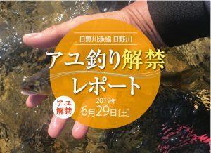 いいと思います!日野川(福井県)+鮎3年目素人映像つき