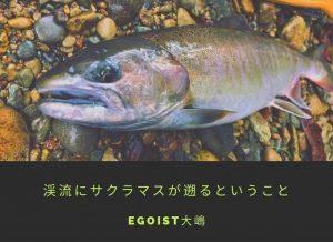 渓流にサクラマスが遡るということ〜EGOIST大嶋〜