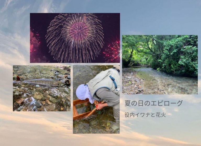 夏の日のエピローグ:役内イワナと花火(2日目)