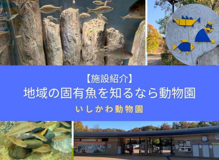 【施設紹介】地域の固有魚を知るなら動物園