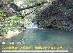 キーツ岩田の石川県動橋川 無垢なヤマメを求めて(解禁日)