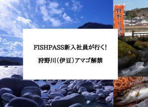 狩野川(伊豆)アマゴ解禁〜FISHPASS新入社員が行く!〜