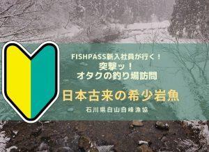 石川県白山白峰漁協 希少!無斑岩魚
