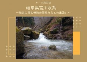 キーツ岩田の 岐阜県宮川水系 峡谷に潜む無数の渓魚たちとの出逢い
