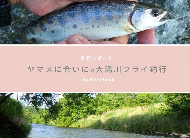 ヤマメに会いに@大湯川フライ釣行