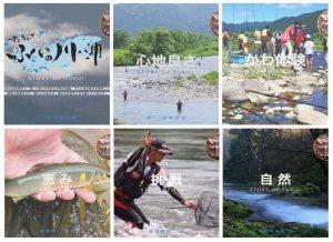 福井県内水面漁連HPがリニューアルされました