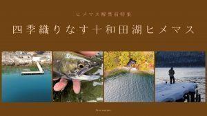 ヒメマス解禁前特集〜四季織りなす十和田湖ヒメマス〜