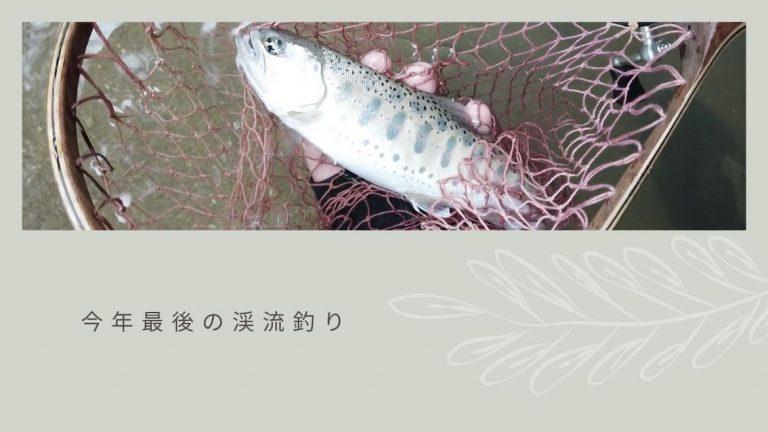 今年最後に渓流釣りに挑戦!