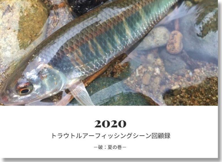 2020渓流トラウトルアーフィッシングシーン回顧録-破:夏の巻-