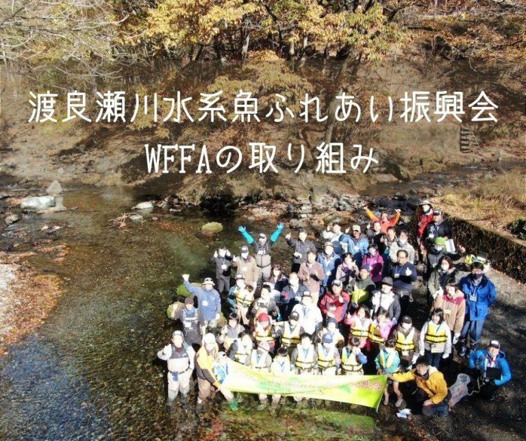 渡良瀬川水系魚ふれあい振興会(WFFA)の取り組み