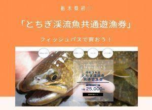 令和3年度 「とちぎ渓流魚共通遊漁券」フィッシュパスで買おう!