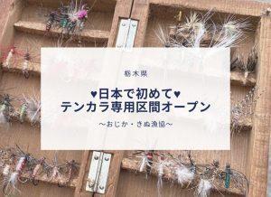 ♥日本で初めて♥テンカラ専用区間オープン〜おじか・きぬ漁協〜