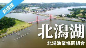 福井県)北潟漁協でフィッシュパスが使えます