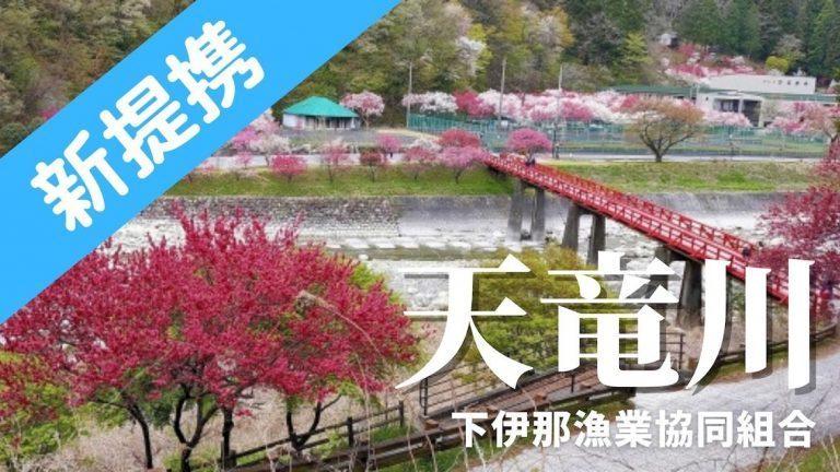 長野県)下伊那漁協でフィッシュパスが使えます