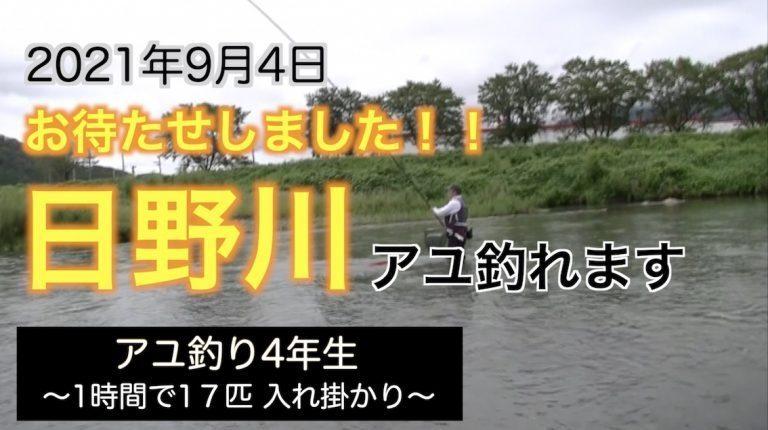 第1弾:お待たせしました!日野川アユ釣れます。〜アユ釣り4年生が1時間で17匹〜
