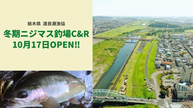栃木県)渡良瀬漁協の冬季ニジマス釣場がOPENします