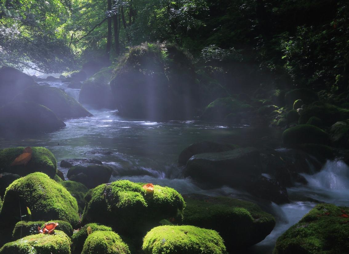 九頭竜川(勝山市) | FISHPASS(フィッシュパス)